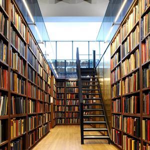 Библиотеки Большой Сосновы