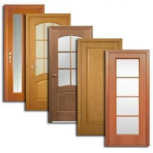 Двери, дверные блоки Большой Сосновы