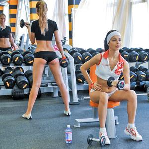 Фитнес-клубы Большой Сосновы